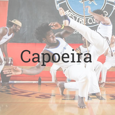 Capoeira Martial Arts Programs