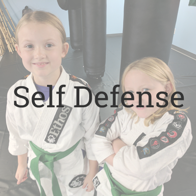 Self Defense Martial Arts Programs