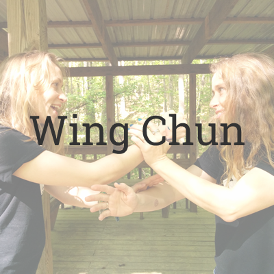 Wing Chun Martial Arts Programs